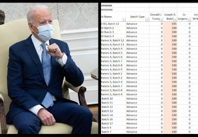 Douglas County Georgia – Biden Allegedly Gets 100% Of The Vote In Many Batches  (Image)